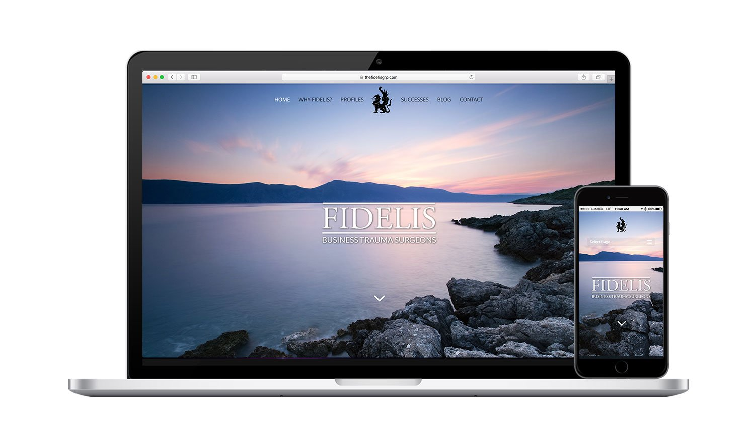 The Fidelis Group Responsive Website